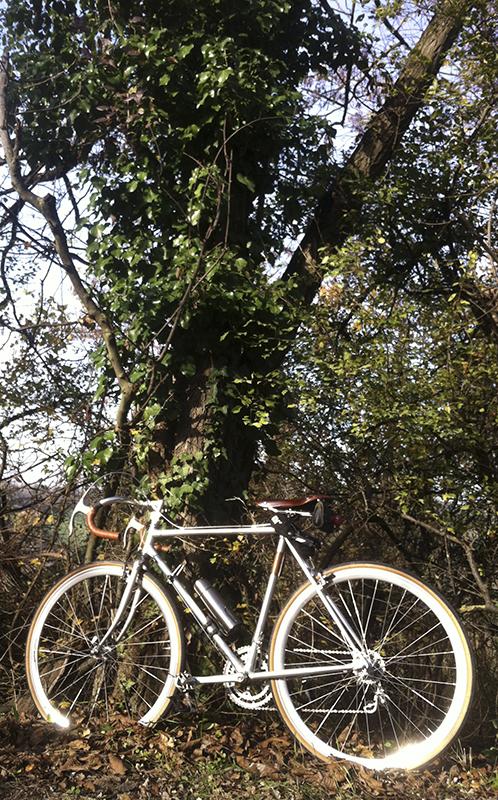 bici-corsa-campagnolo5