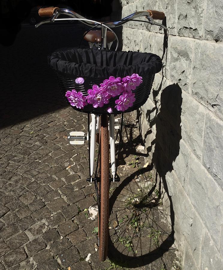bici-donna-scattofisso-compra-online1